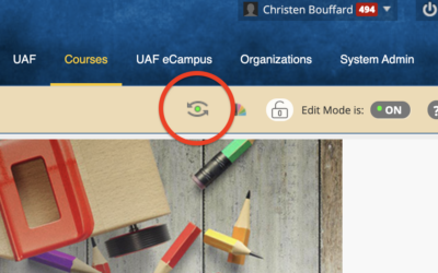 Setting up your course in Blackboard