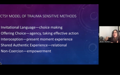 Trauma-Informed Pedagogy — Part 2