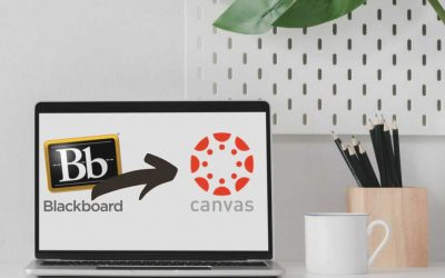 My course content is in Canvas. Now what?